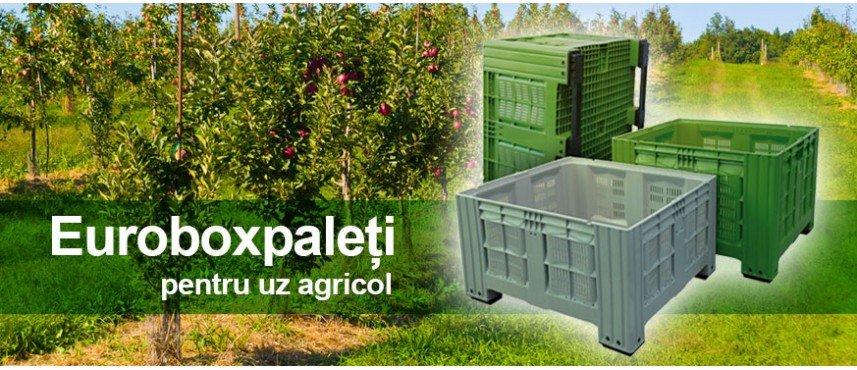 Boxpaleti